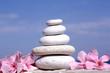 Zen Stones with Pink Flowers
