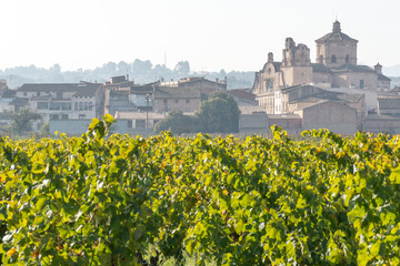 Spain, Catalonia, Tarragona, Ginestar, Sant Marta church, Vineyards against old town