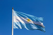 Flattering Argentinian Flag - 77399135