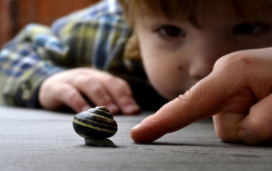 Father and son looking at snail (2-3 years)