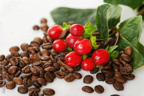 Coffee berries and beans - 77403705