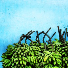 Brazil, Amazonas, Stack of bananas in front of blue wall
