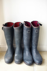 UK, England, Glastonbury, Two pairs of Wellington Boots