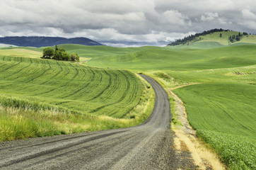 USA, Washington, Palouse, Winding country road