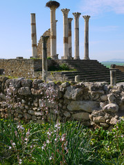 Morocco, Volubilis ruins