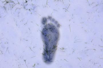 Barefoot footprint in snow
