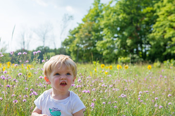 USA, Michigan, Wexford County, Cadillac, Toddler boy sitting in meadow