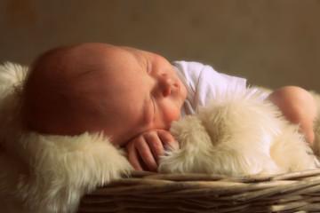 Studio shot of baby sleeping in basket