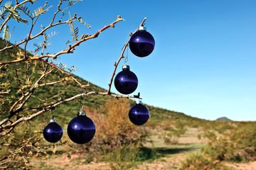 USA, Arizona, Maricopa County, Arlington, Blue christmas tree ornaments