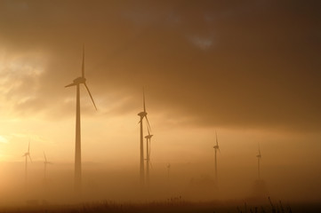 Germany, Lower Saxony, East Frisia, Wind turbines in fog