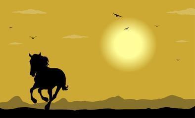 silhouette di cavallo selvaggio