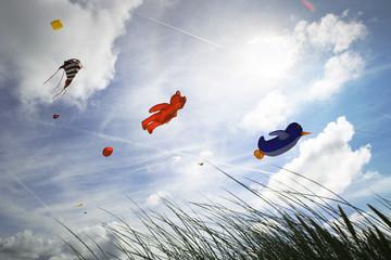 Various kites flying against sky during kite festival