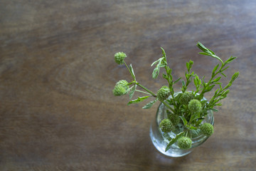 Overhead view of bunch of herb branches in glass vase on wooden surface