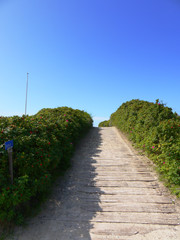 Denmark, Beach path