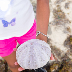 Young Girl Holding A Sea Urchin