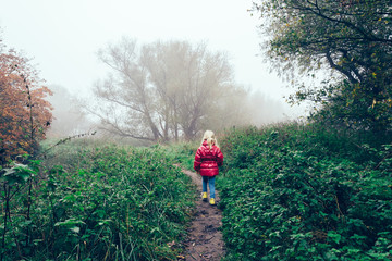 Netherlands, Girl (2-3) walking into fog