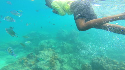 Snorkeling from boat tropical sea Southeast Asia