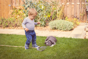 Child (2-3) and dog playing