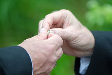 Handing Over the Ring to the Groom