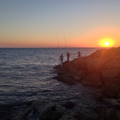 Israel, Tel Aviv, Fishermen fishing from rocks at sunset