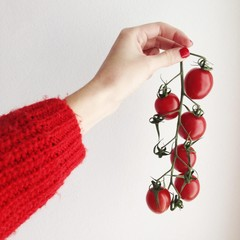 Human hand holding red tomatoes