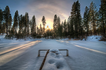 USA, Idaho, Sunset in winter forest