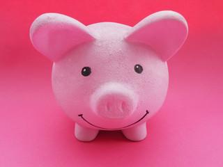 Studio shot of piggy bank in pink color