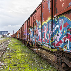 Graffiti Covered Train