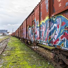 Graffiti Covered Train