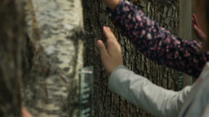 Child touching a tree trunk