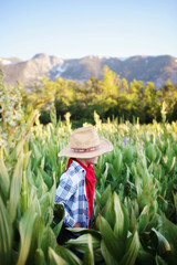 Boy dressed as cowboy outdoors