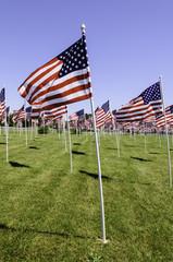 USA, Raised flags