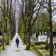 Rear view of woman walking through cemetery