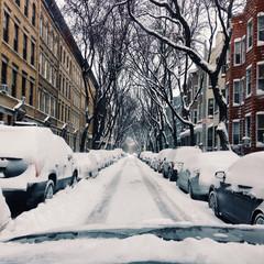 Brooklyn, Snowy neighborhood