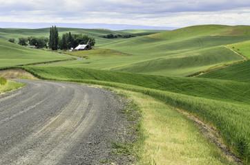USA, Washington State, Palouse, Scenic countryside