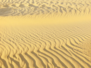 Close-up of sand on desert