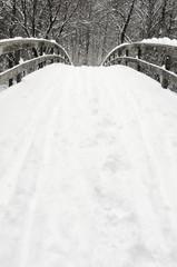 Snowy bridge at winter
