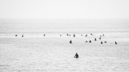 Group of surfers waiting to catch a wave