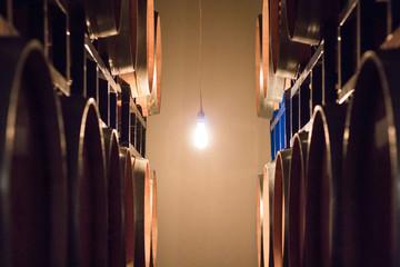 Wine barrels lit by single bulb