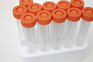 Empty test tubes in laboratory
