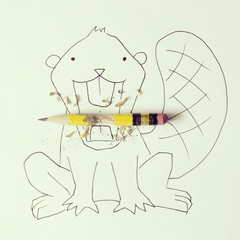Conceptual beaver eating pencil
