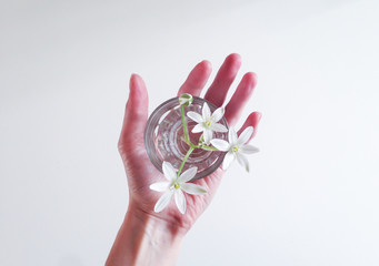 Hand holding a glass of water with a flower