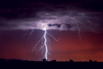 USA, Arizona, Arlington, Lightning striking a tree