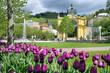 Singing fountain, spa Marianske lazne, Czech republic - 77442745