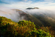 Fog in the morning at Marin Headland, San Francisco