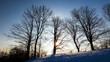 canvas print picture - Winter Sun