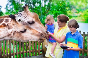 Kids feeding giraffe in a zoo