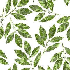 Seamless pattern with laurel. Hand-drawn floral background.