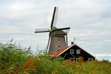 Amsterdam Mulin