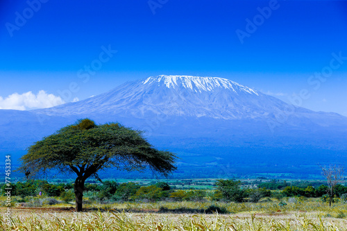 Poster Afrika Kilimanjaro landscape